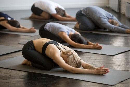 Aula em grupo de hatha yoga
