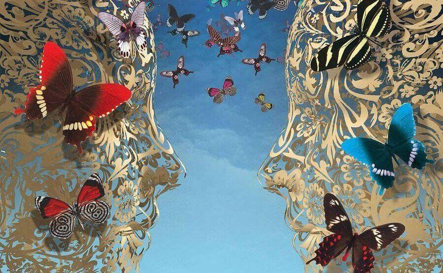 Resultado de imagem para intuição borboleta