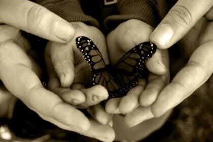A amabilidade é uma língua que todo mundo entende