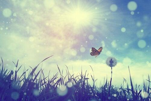 Deixar fluir: a arte de não ir contra a corrente