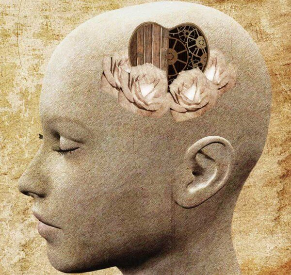 Representação da compaixão no cérebro