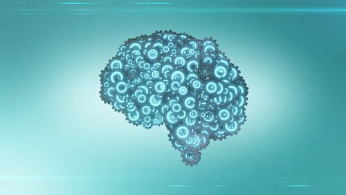 As engrenagens do cérebro humano