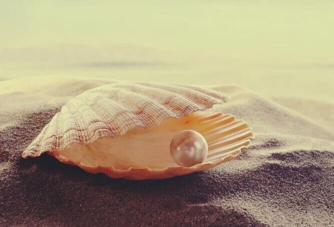 Concha com pérola na areia