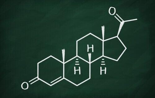 Progesterona: características e funções