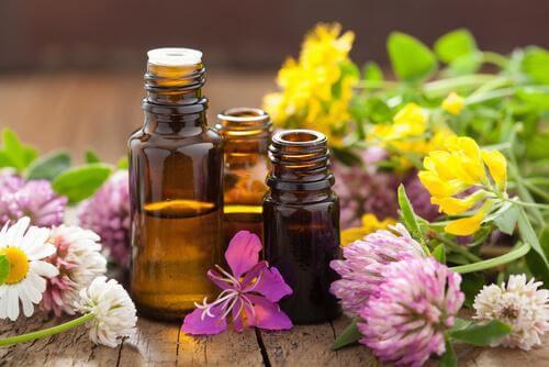 Aromaterapia, o maravilhoso poder dos cheiros