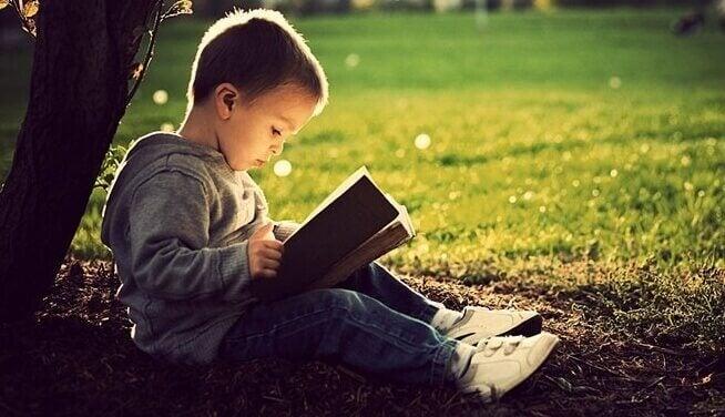 Criança lendo livro no parque