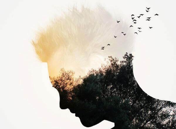 Silhueta humana com pássaros voando