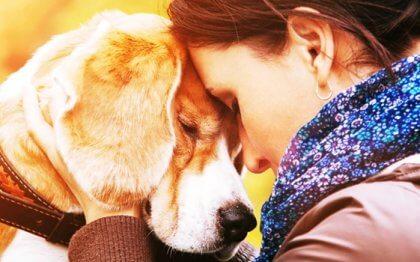 Os motivos que nos levam a amar um animal com tanta intensidade