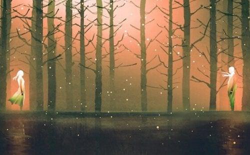 Encontro em floresta ao anoitecer