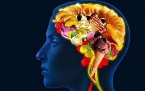 A importância da alimentação para o cérebro