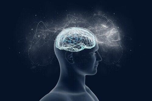 Quais são os efeitos da religião no cérebro?