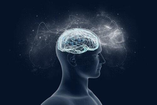 Os enigmas do nosso cérebro