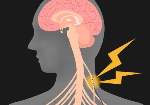 Como estimular o nervo vago