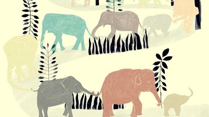 O elefante que perdeu seu anel de casamento