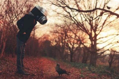 Homem-máquina fotografando pássaro