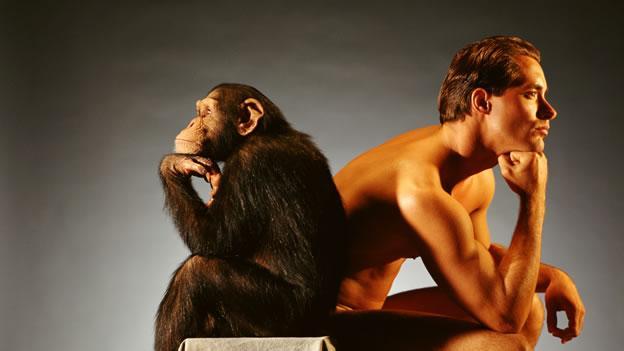 Homem e macaco pensando