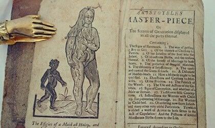 O curioso manual do sexo proibido por 3 séculos