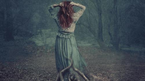 Mulher caminhando em floresta