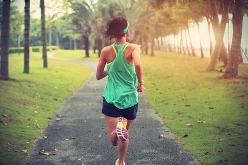 A prática de exercícios favorece a neurogênese