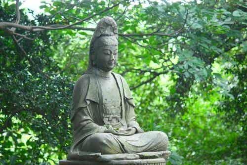 Zazen, o segredo da filosofia zen