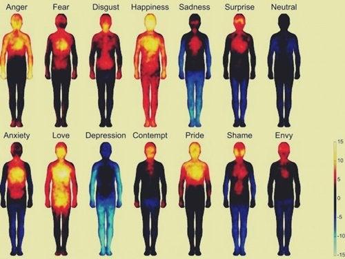 Terapia somática: liberar e entender emoções presas em nosso corpo
