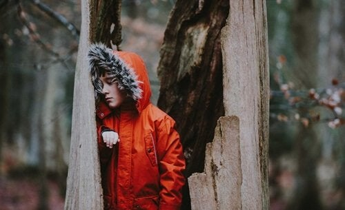 Menino dentro de árvore