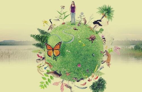 Proteger a natureza e o planeta