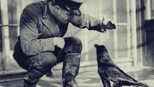 Soldado treinando corvo