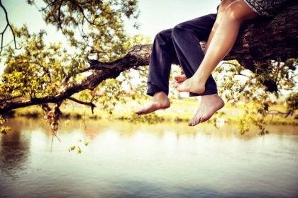 Casal sentado em árvore
