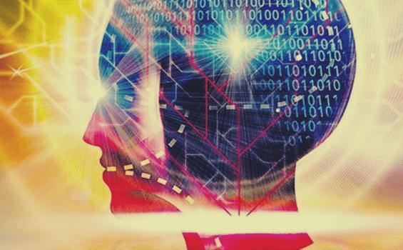 O funcionamento do cérebro