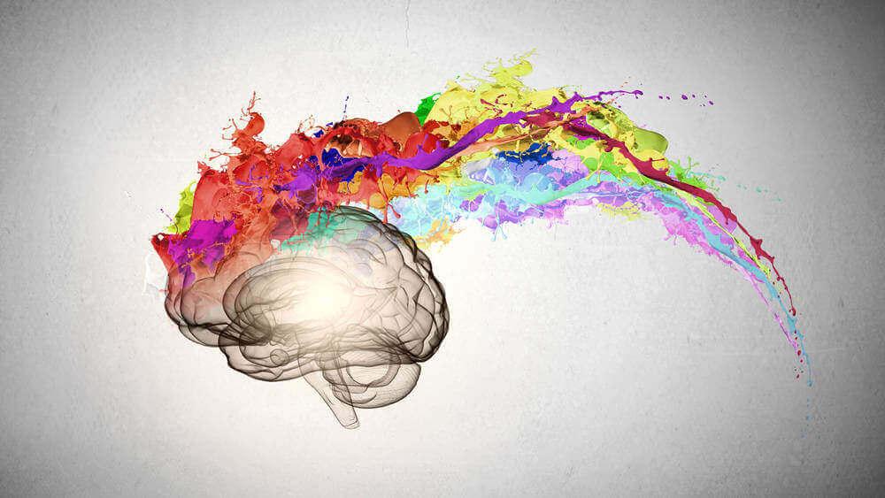 A criatividade regida pelo nosso cérebro