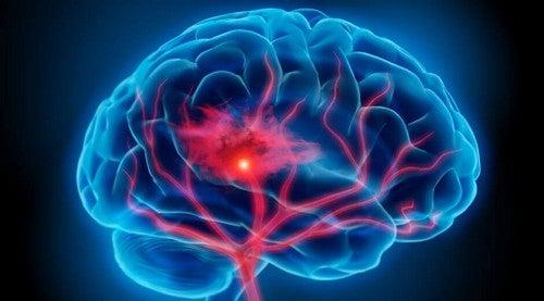 Mágica e cérebro: a criação de uma ilusão