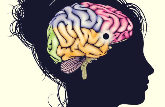 Núcleo accumbens: um centro de aprendizado, motivação e prazer