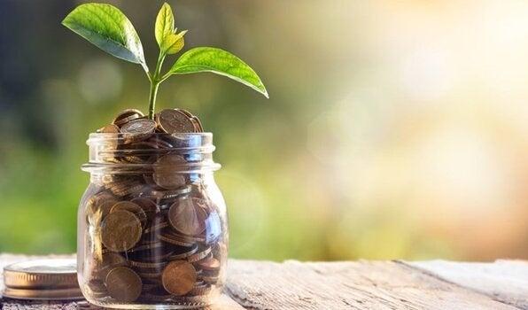 Florescimento do dinheiro