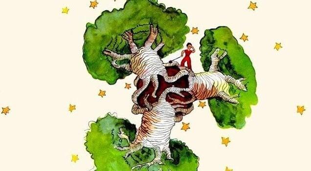 Um baobá no coração, uma reflexão de O Pequeno Príncipe