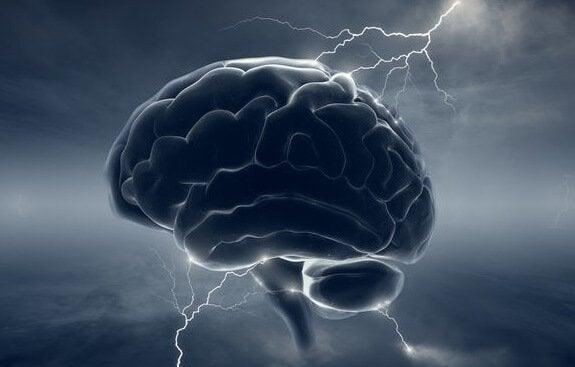 A maldade no cérebro