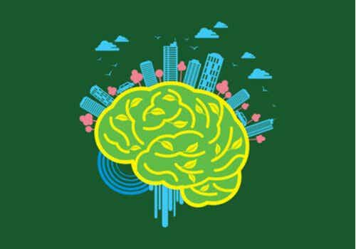 Neuroarquitetura: o poder do meio sobre o cérebro