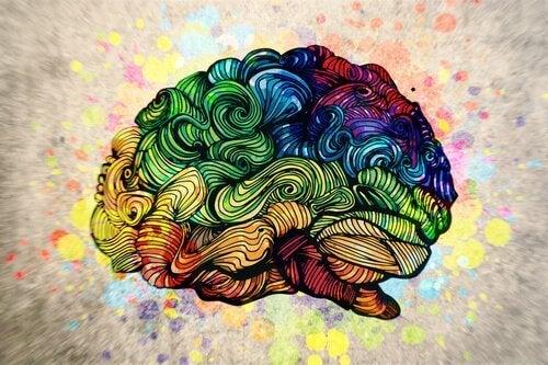 O efeito da arte no nosso cérebro