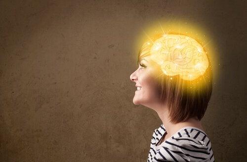 A área da felicidade no cérebro