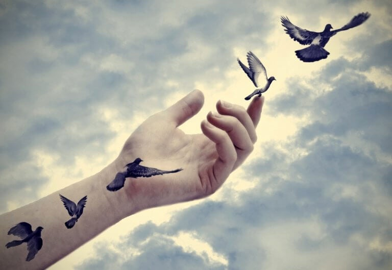 Pássaros voando saindo de mão