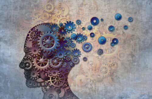A forma como o cérebro combina lembranças para resolver problemas