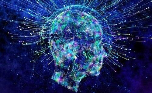 As células OLM e o controle da ansiedade
