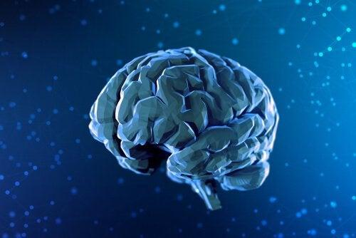 Breve história da neurociência