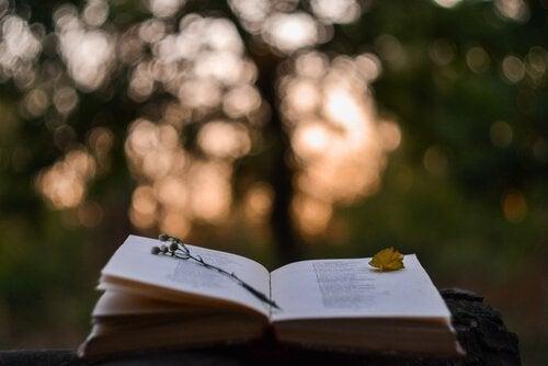 Livro aberto com ramo de flores