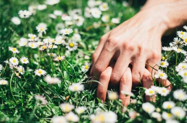 Mãos dadas em campo de flores