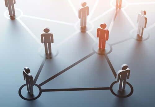 A importância das conexões humanas