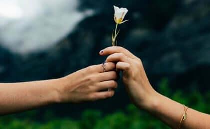 Pequenos gestos de amor