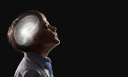 Neurobiologia da intuição
