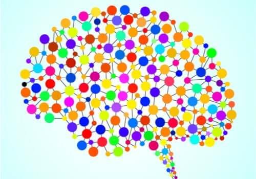 As 97 áreas do cérebro que não conhecemos