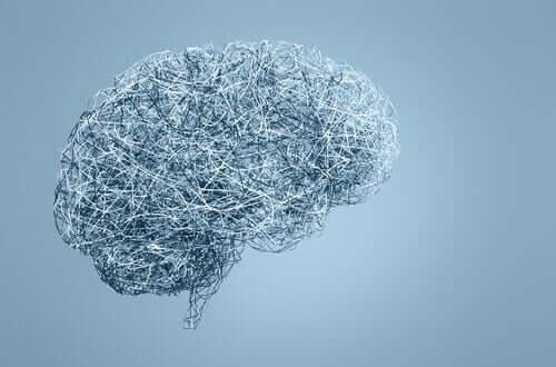 Cérebro com fundo azulado